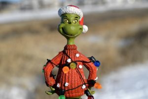 grinch natale bambini gdpr